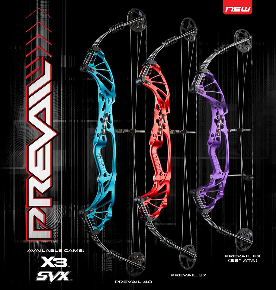 hoyt-privail-bows